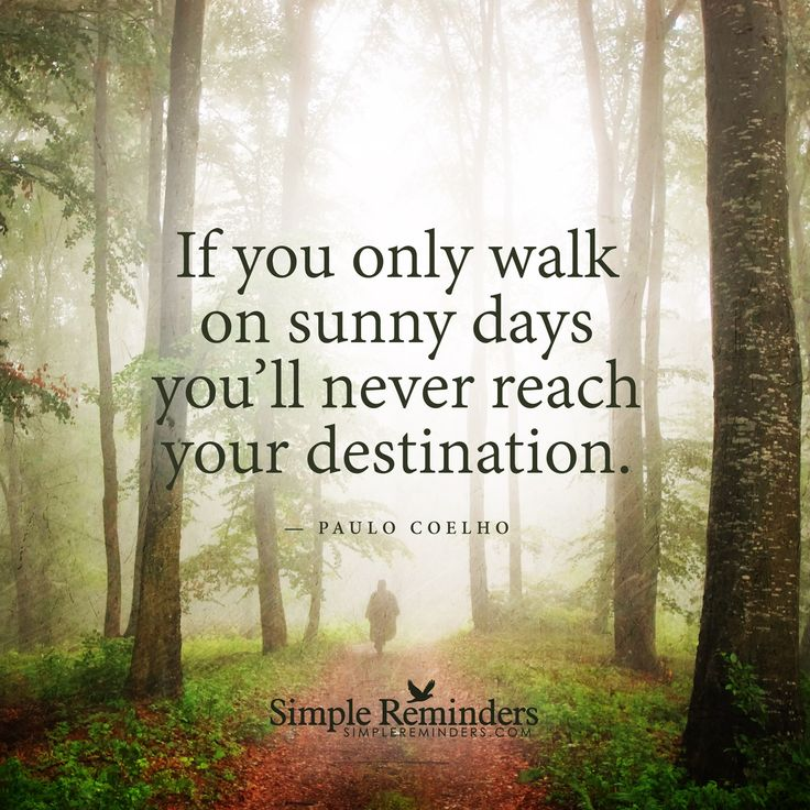 1000 Sunny Day Quotes On Pinterest Sunny Quotes