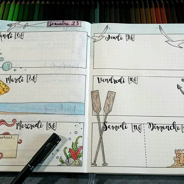 Semaine 23 dans mon bullet journal... #bulletjournal #bujo #bulletjournallove #polychromos #dessin #intemporellecreation #unipin #leuchtturm1917 #illustration