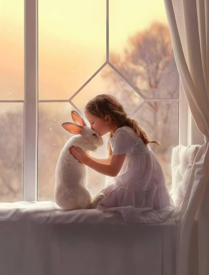 Gute Nacht Hase…😊