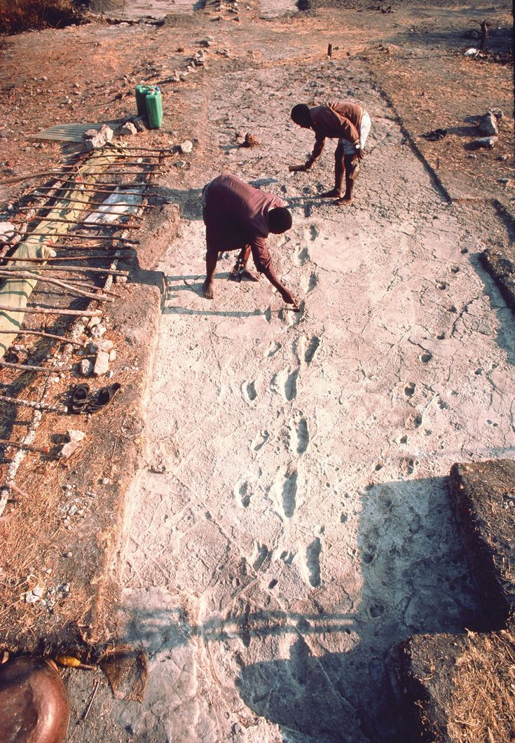 Archaeology, Geology - Shorties: 3.7 million year old Australopithecus footprints show 'human walking' began much earlier than believed. ... (Tanzania, Garden of Eden, makes sense to find these prints here.)