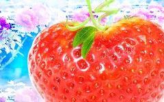 strawberry flo0121