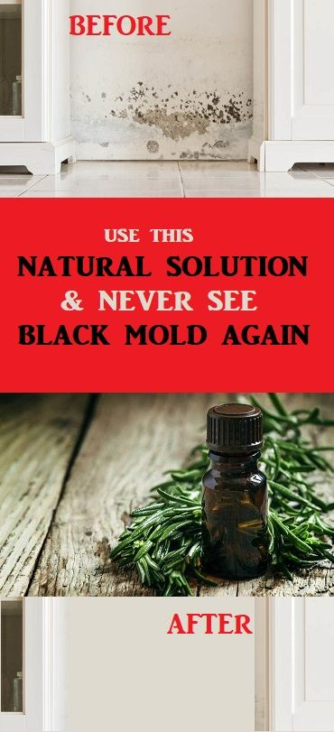 Best Natural And Non Toxic Way To Get Rid Of Black Mold For Good Cleaning Homehacks Cleaningtips Cleaninghacks