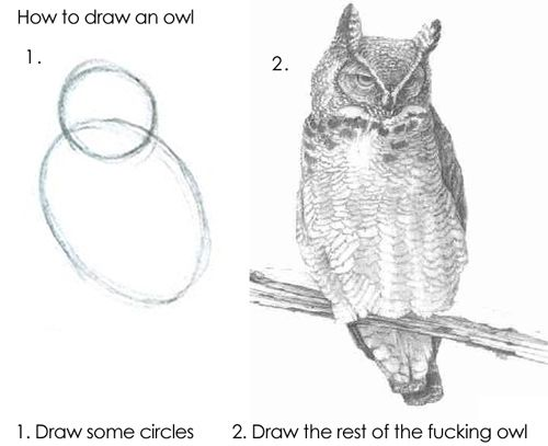 Shopify's culture summed up - Draw the rest of the fucking owl!