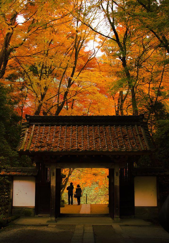 "lifeisverybeautiful: "" Korankei Garden, Aichi, Japan via 香嵐渓の紅葉 | PHOTOHITO Autumn Leaves """