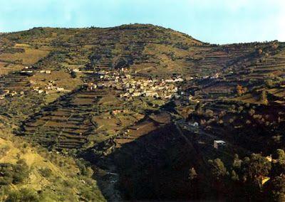 Retratos de Portugal: Santa Marta de Penaguião - Vista Geral de Alvações do Corgo