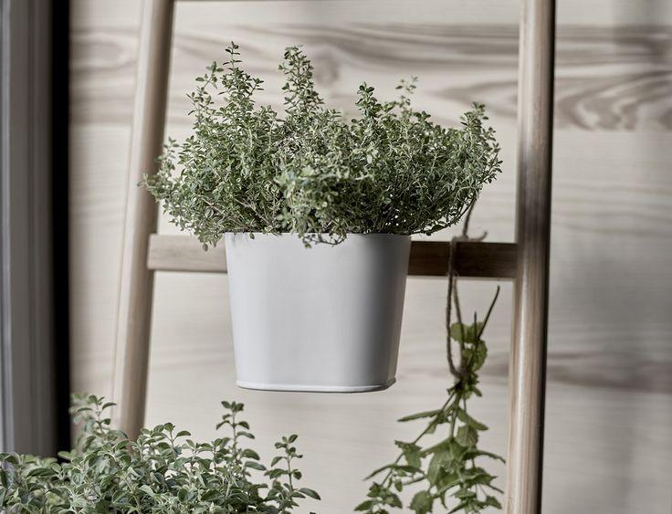 Meer dan 1000 idee n over plantenstandaard op pinterest for Meuble porte plante ikea