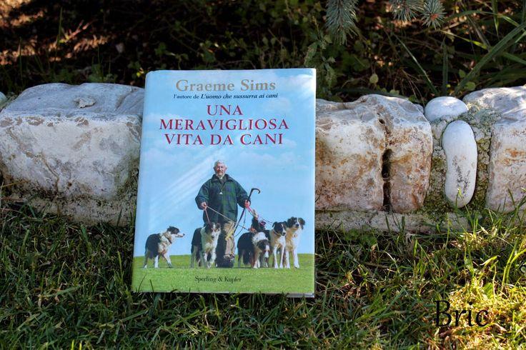 Recensioni di una lettrice onnivora: Una meravigliosa vita da cani