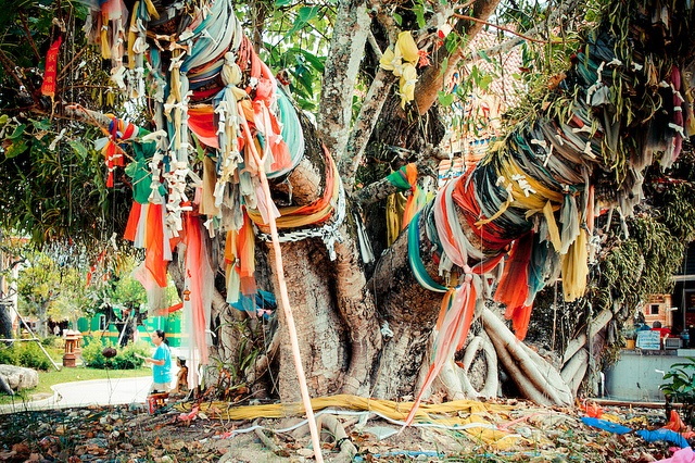 prayer tree covered in prayer flags outside of a Buddhist temple in Thailand. This would be cool to do this in back yard-write prayers for people on scraps of fabric and tie to a tree.