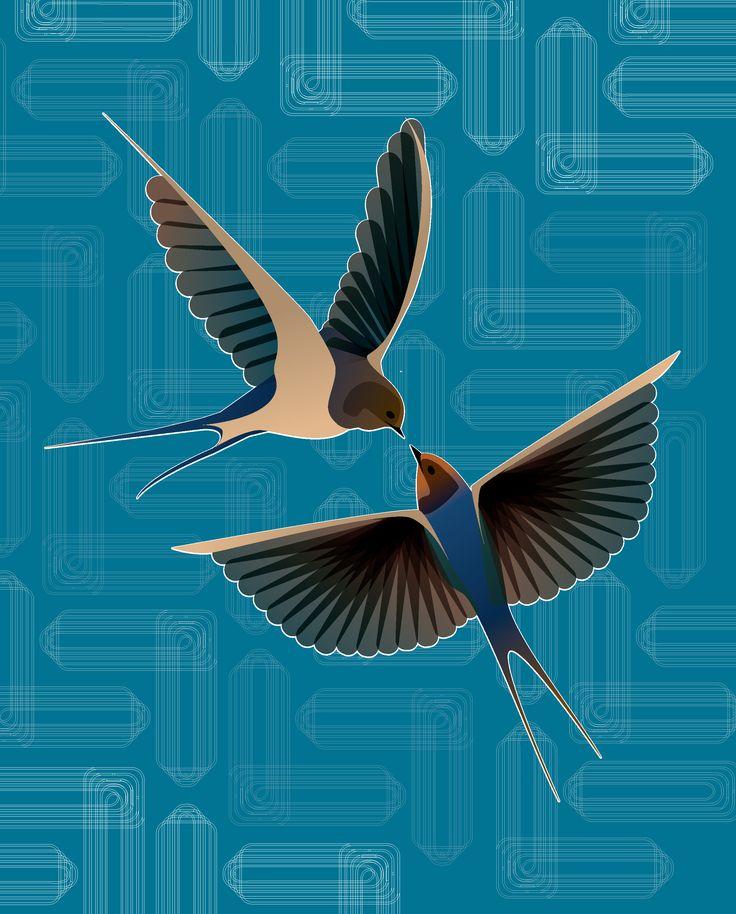 swallow by Noa Ward