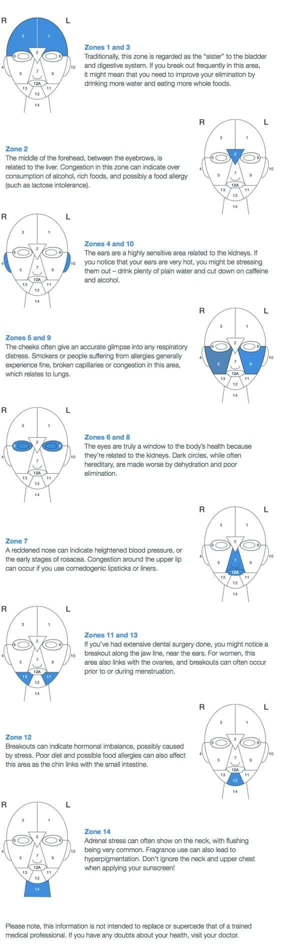 Best 25 chinese face map ideas on pinterest cheek acne cause chinese face mapping skin analysis ccuart Image collections