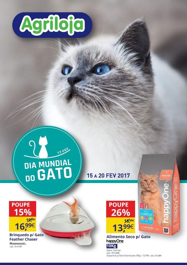 Campanha Agriloja Dia Mundial do Gato - 15 a 20 Fevevereiro