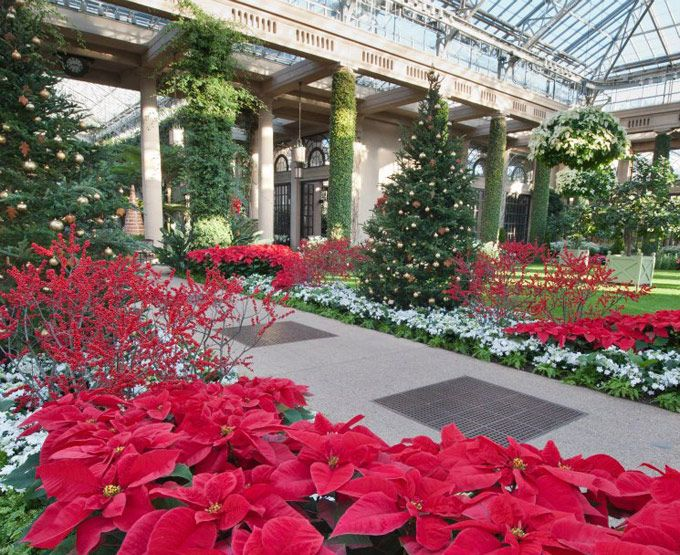 Longwood Gardens Christmas, A Twinkling Wonderland Bedecked With 500,000  Lights, Returns For The 2012 Holiday Season On November 22