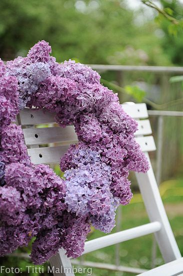 Lilacs for YOU dad :) The exact same ones as your lilac bush you had in your back yard.... Miss you