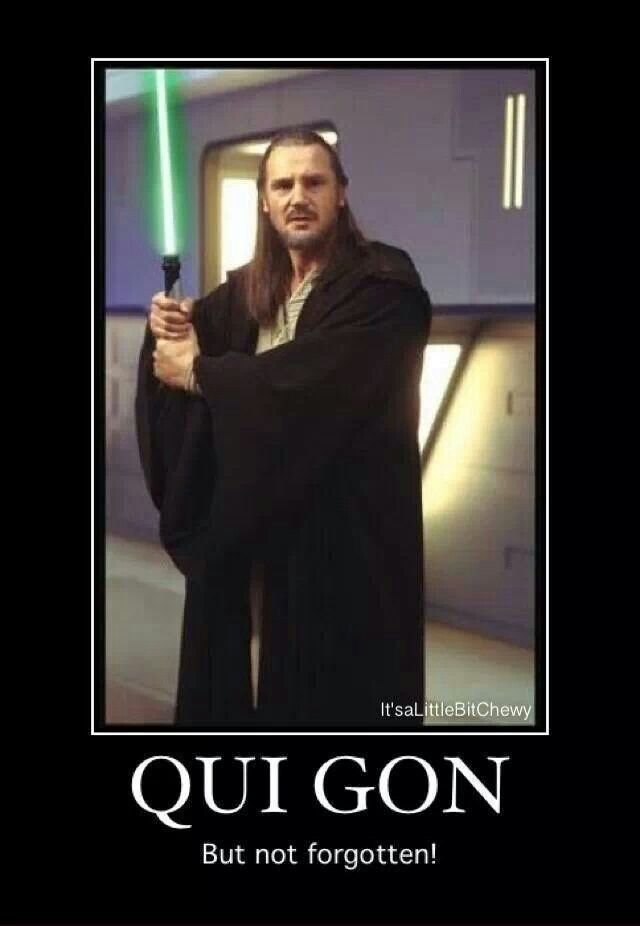 Image result for Qui-Gon but not Forgotten