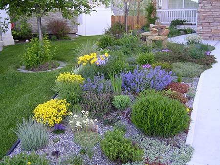 323 best water wise landscaping images on pinterest for Easy care front yard landscaping