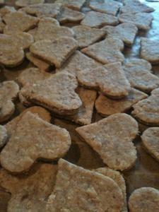 Rezept: Hundekekse mit Thunfisch