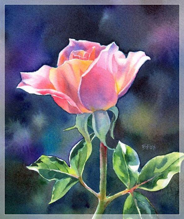 roz (3) (586x700, 192Kb)