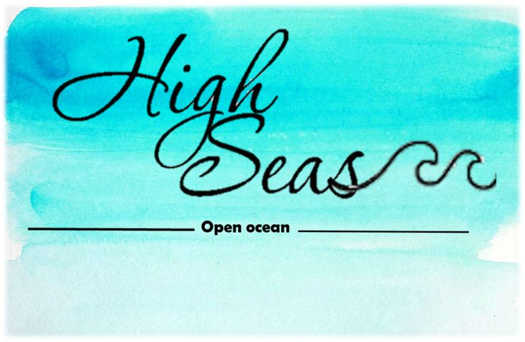 High Seas Tees 10% of profits from sold shirts go to ocean conservation!
