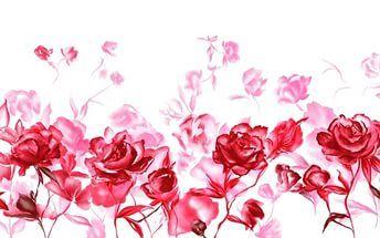 валентина красный розы.
