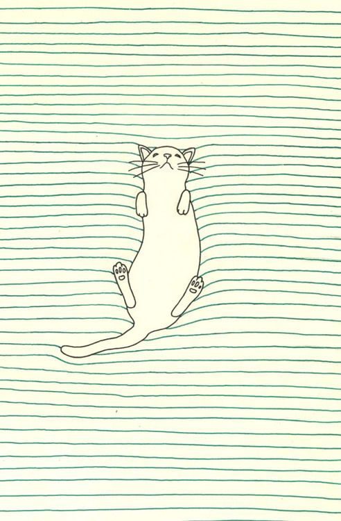 Simple kitty cat illustration