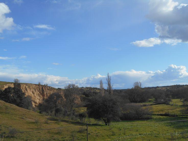 Alrededores de la Carretera TO-9312 entre Castillo de Bayuela y Garciatum, entre los Km 15 y 16.