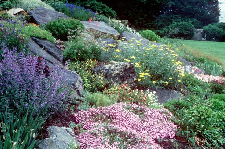 1000 ideas about rock garden borders on pinterest white gardens yard landscaping and flowers. Black Bedroom Furniture Sets. Home Design Ideas
