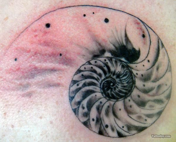 Google Image Result for http://tattoojoy.com/tattoo-designs/var/resizes/Animal%2520Tattoos/nautilus-shell-tattoo.jpg%3Fm%3D1333017520