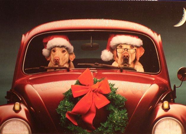 images  vw christmas  pinterest cars merry christmas  christmas car