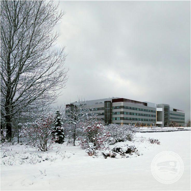 #budynek37 #wobiak #sggw #zima ❄❄❄ #building37 #wuls #winter