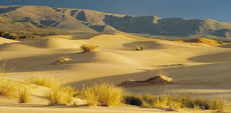 Witsand nature reserve, Northern Cape