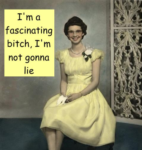 I'm a fascinating bitch, I'm not going to lie - vintage retro funny quote More