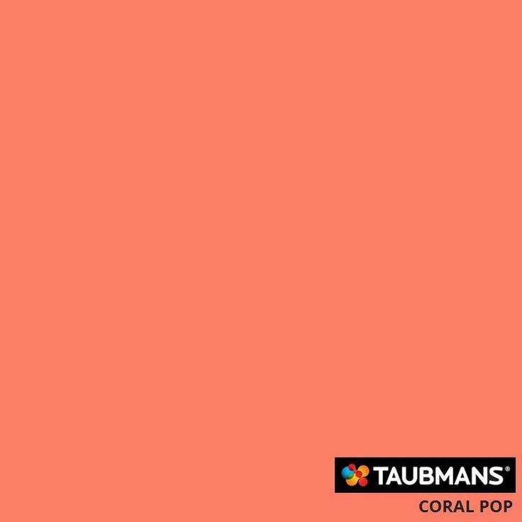 Taubmans Australia Colour: Coral Pop T12 23F2
