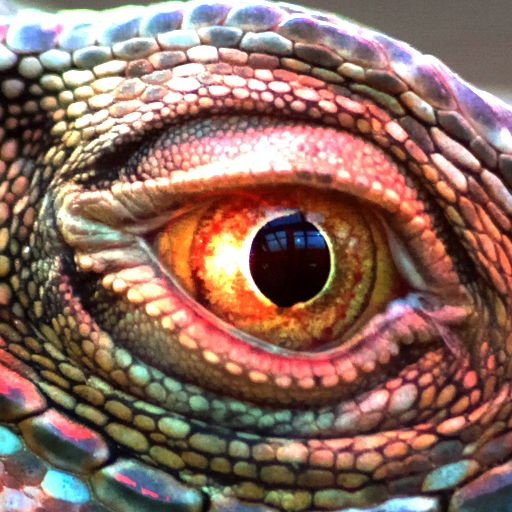 Close up amphibian eye which has a different pupil shape compared to other eyes have seen.
