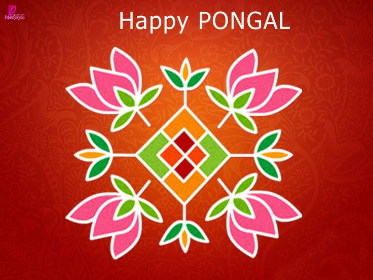 Happy Pongal Wishes Picture