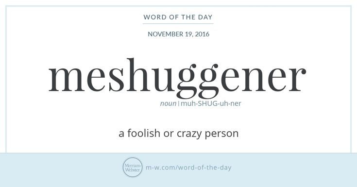Meshuggener — Definition: a foolish or crazy person. #WordOfTheDay  http://www.merriam-webster.com/word-of-the-day/meshuggener-2016-11-19