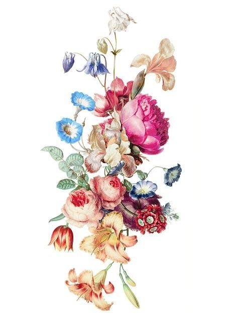 Image gratuite sur Pixabay - Fleur, Vintage, Floraux, Peinture