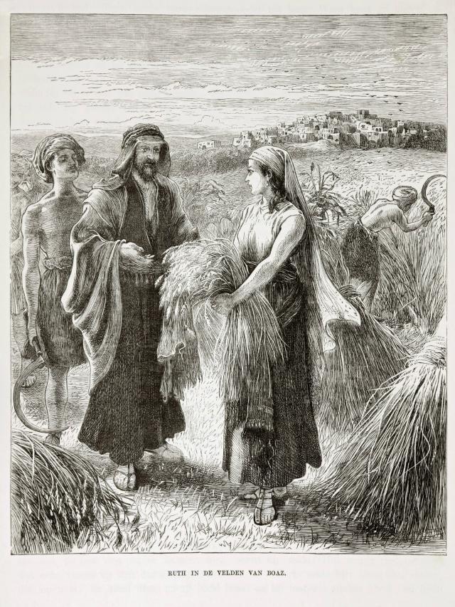 Ruth: A Biblical Heroine for Everyone