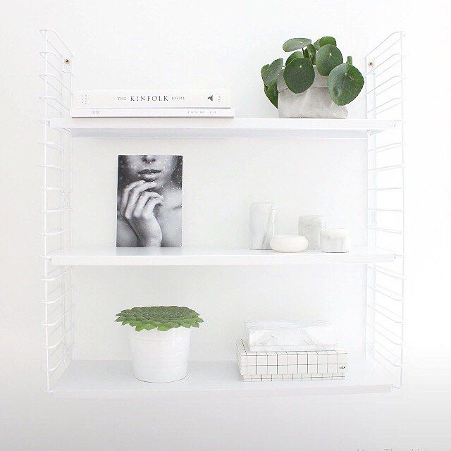 56 best pilea peperomioides chinese money plant images on pinterest indoor plants chinese. Black Bedroom Furniture Sets. Home Design Ideas