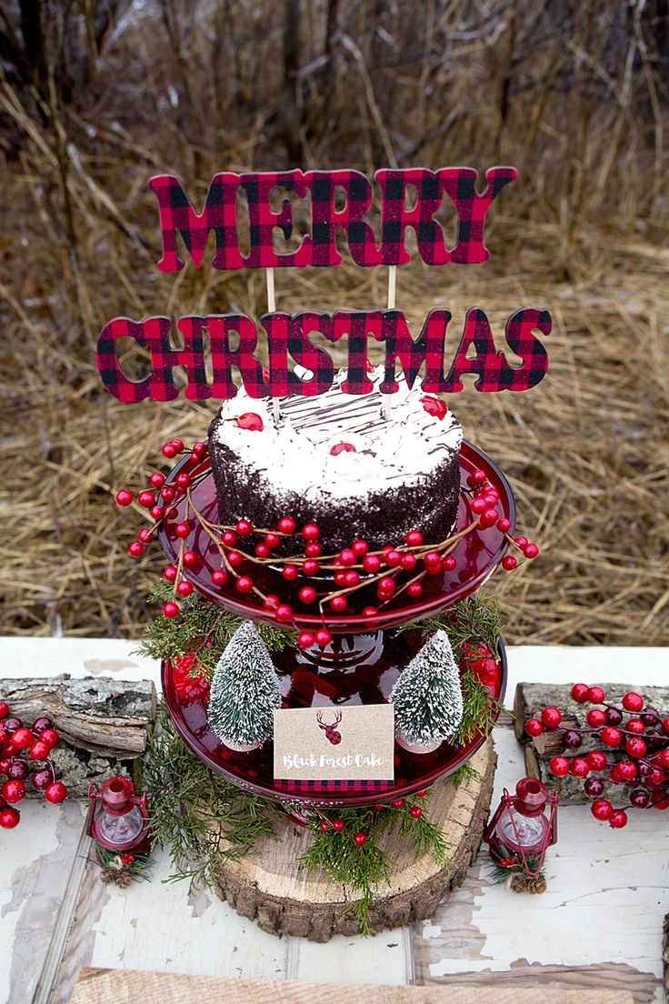 Rustic christmas party decor - Rustic Christmas Party Decor 50