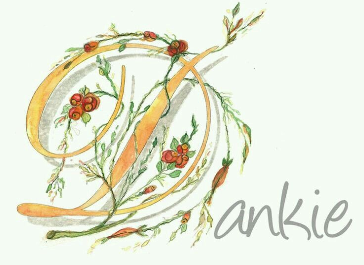 how to say thank you in afrikaans