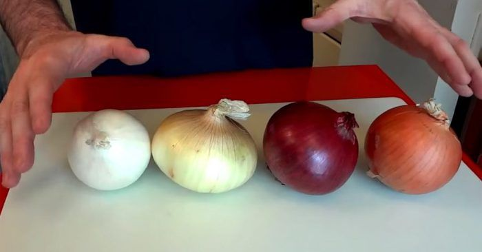 With all the different types of onions out there, it's hard to know what's what! Picking out the wrong type of onion could be the difference between a masterpiece of a meal, and a complete