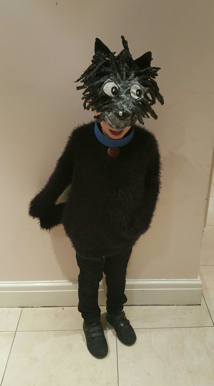 Hairy Maclary costume for World Book Day. Homemade papier mache headgear.