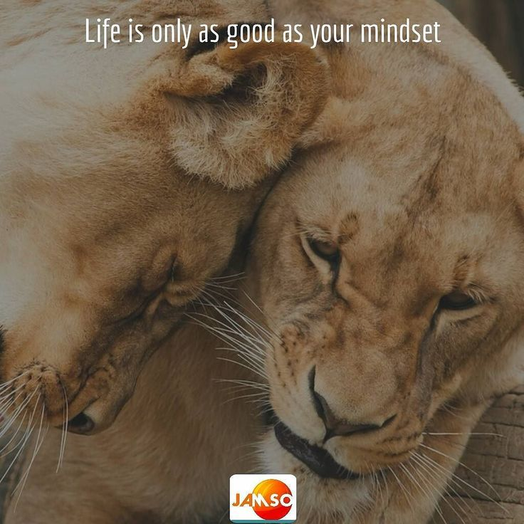 Go grab some. Life is only as good as your mindset.