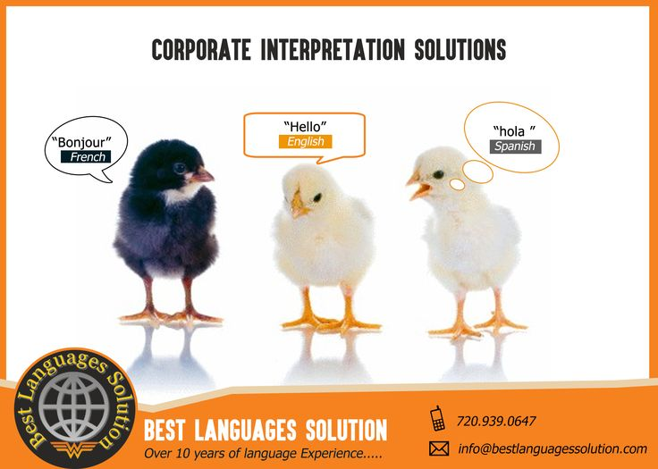 #Famous Sign #Language #Interpreters, Interpretation And #Translation Services - Bestlanguagessolution Providing quality language services is the main concern of the Best Languages Solution - Colorado. It is offering interpreters #services for immigration, medical and #court interpretation for their clients with highly trained language #specialists is always ready to help you. Considering your project requirements, they will provide you translators and interpreters.