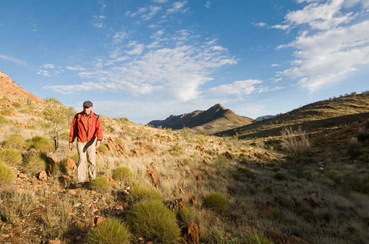 Larapinta Trail by World Expeditions - soak up the ethereal scenery of vast flood plains, razorback rocky outcrops and the glorious scale of this ancient land, walking the high ridgelines of the West MacDonnell Range, led by your guides at World Expeditions.