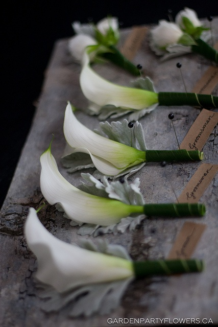 Calla lilies Boutonniere #flowers #inspiration #wedding #thebigday #360east