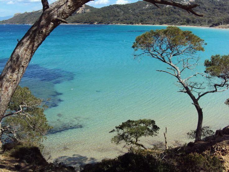 Porquerolles Island---take me back!