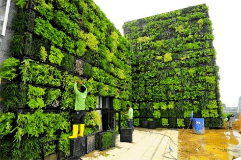 Installing the Orchard Central Greenwalls, Singapore
