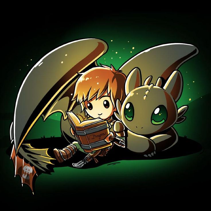 Hiccup and Toothless Bedtime Story T-Shirt | Official How to Train Your Dragon Tee – TeeTurtle
