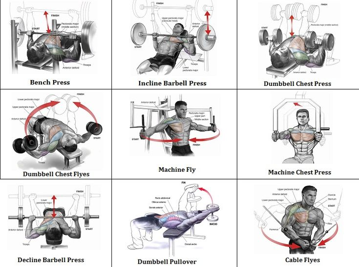 Mass building workout exercises for an explosive chest